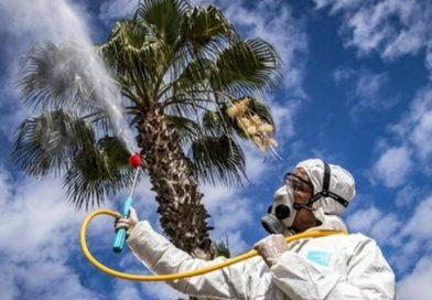 Синоптики рассказали, когда в Россию придет погода «убивающая» коронавирус
